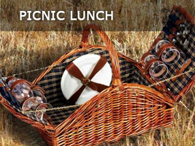 picnic-lunch