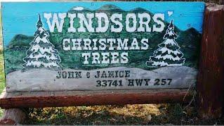 windsors