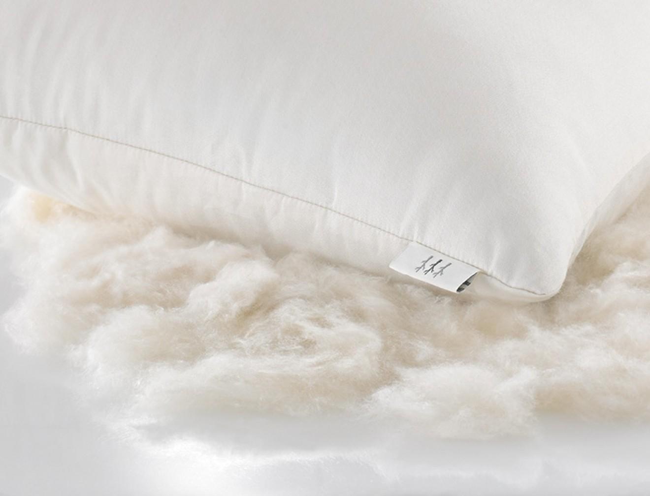 1200x580_pillow1_80872