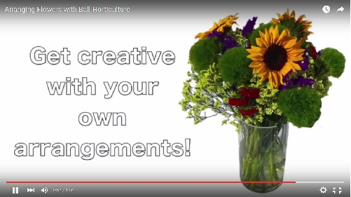 Arranging Flowers with Ball Horticulture