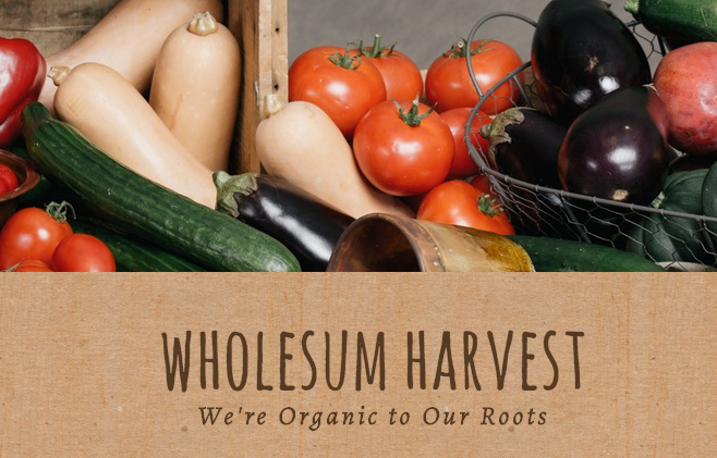 ORGANIC FOOD - One Company Doing It Right!