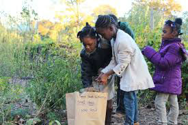Urban Farming: Transforming Communities
