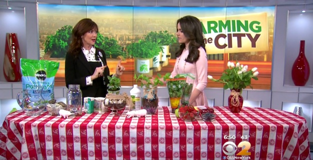 Farming In The City - CBS New York