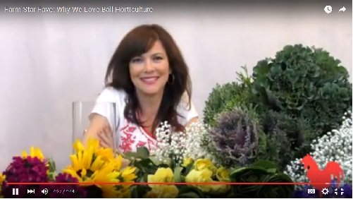 Farm Star Fave: Why We Love Ball Horticulture