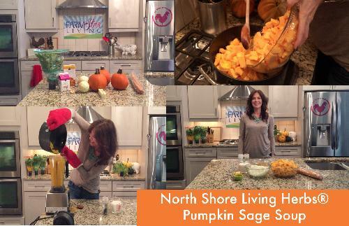 North Shore Living Herb's Pumpkin Sage Soup
