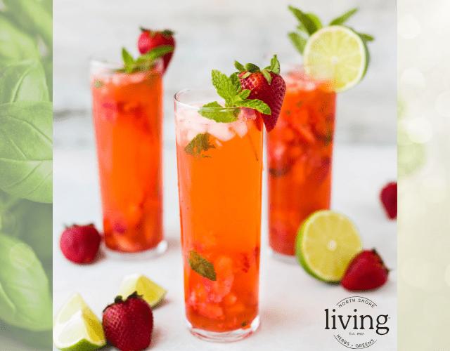 Strawberry and Basil Sangria