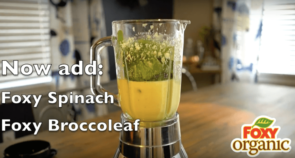 2 in 1 Green Smoothie with Foxy