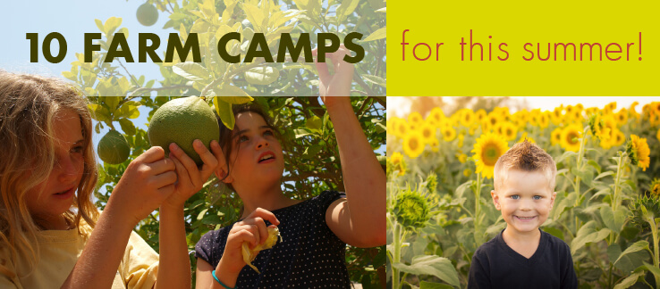 10 Farm Camps for this Summer!