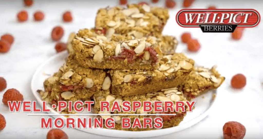 On-the-GO! Well•Pict Raspberry Morning Bars