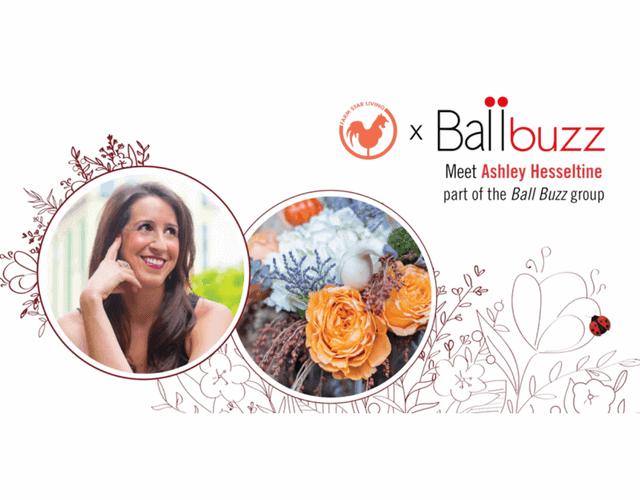 November Ballbuzz - Meet Ashley!