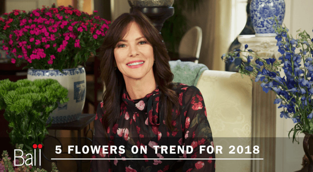 Farm Star Mary's Minutes: 5 Flowers On Trend in 2018