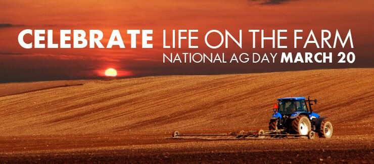 FARM LIFE - IT AIN'T Easy!