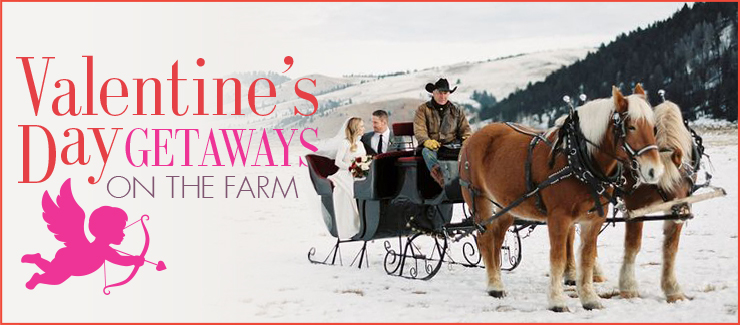 Romantic Farm Getaways