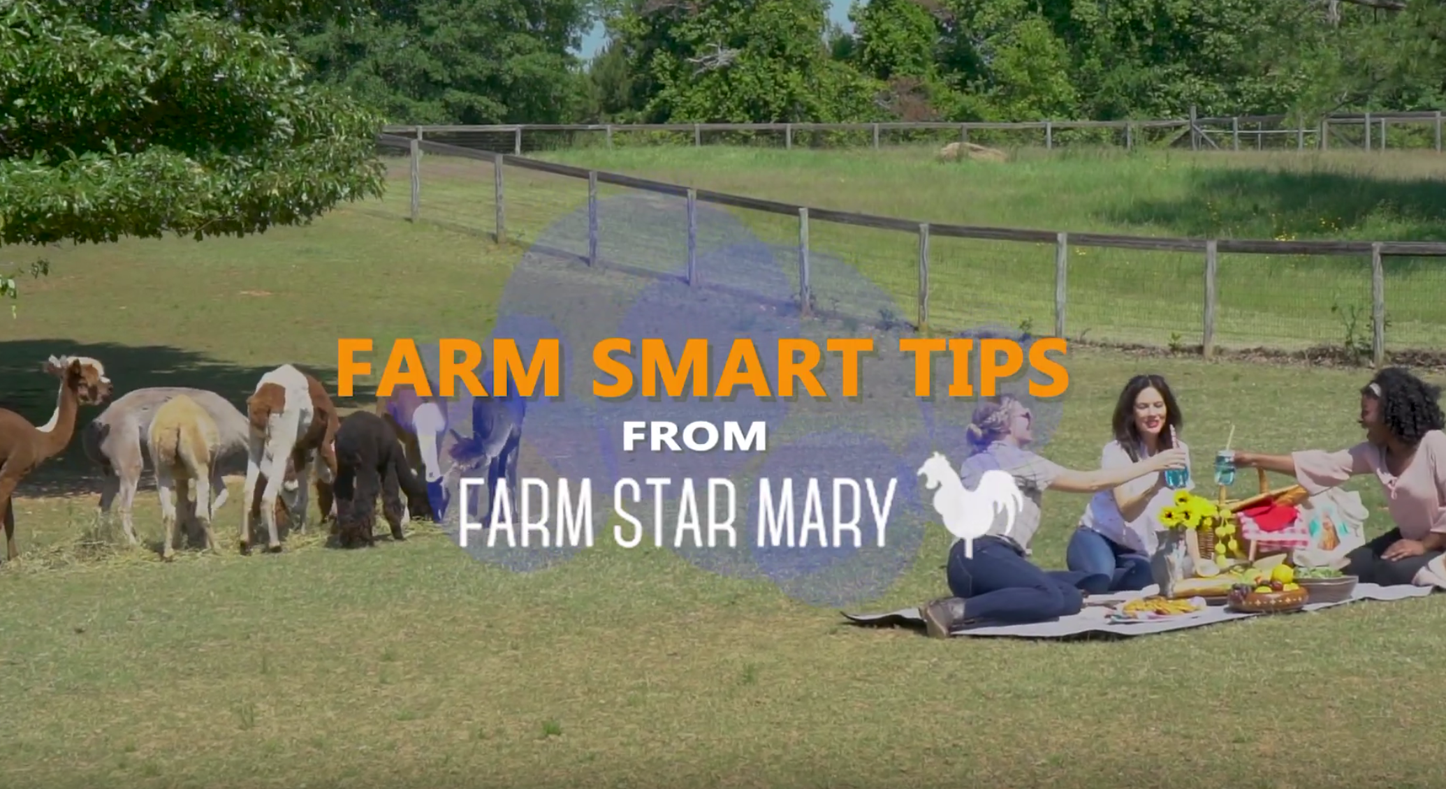 Smart Tips for Farm Trips: Tip #1