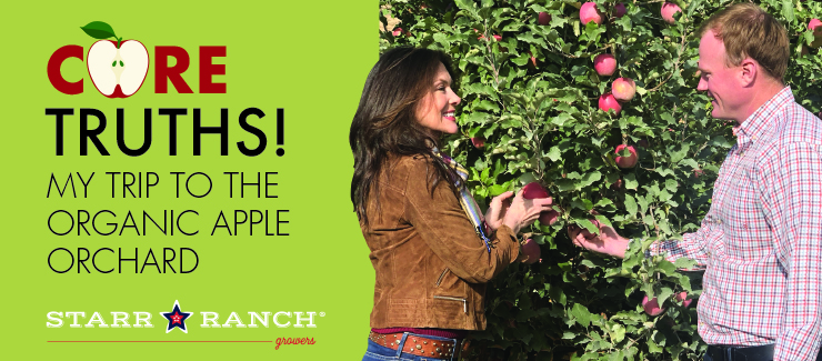 CORE TRUTHS: My Trip to the Organic Apple Orchard