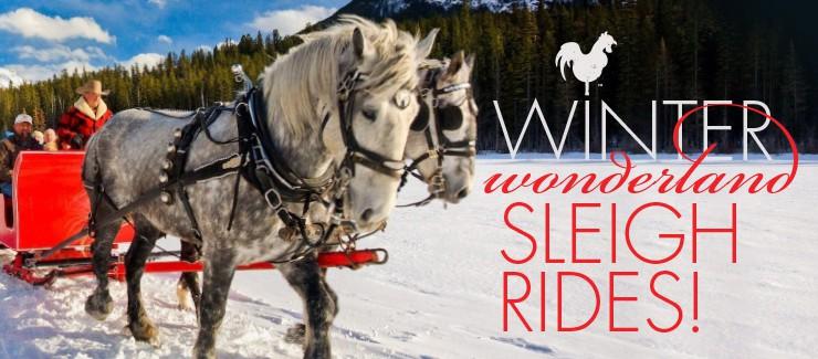 Winter Wonderland Sleigh Rides