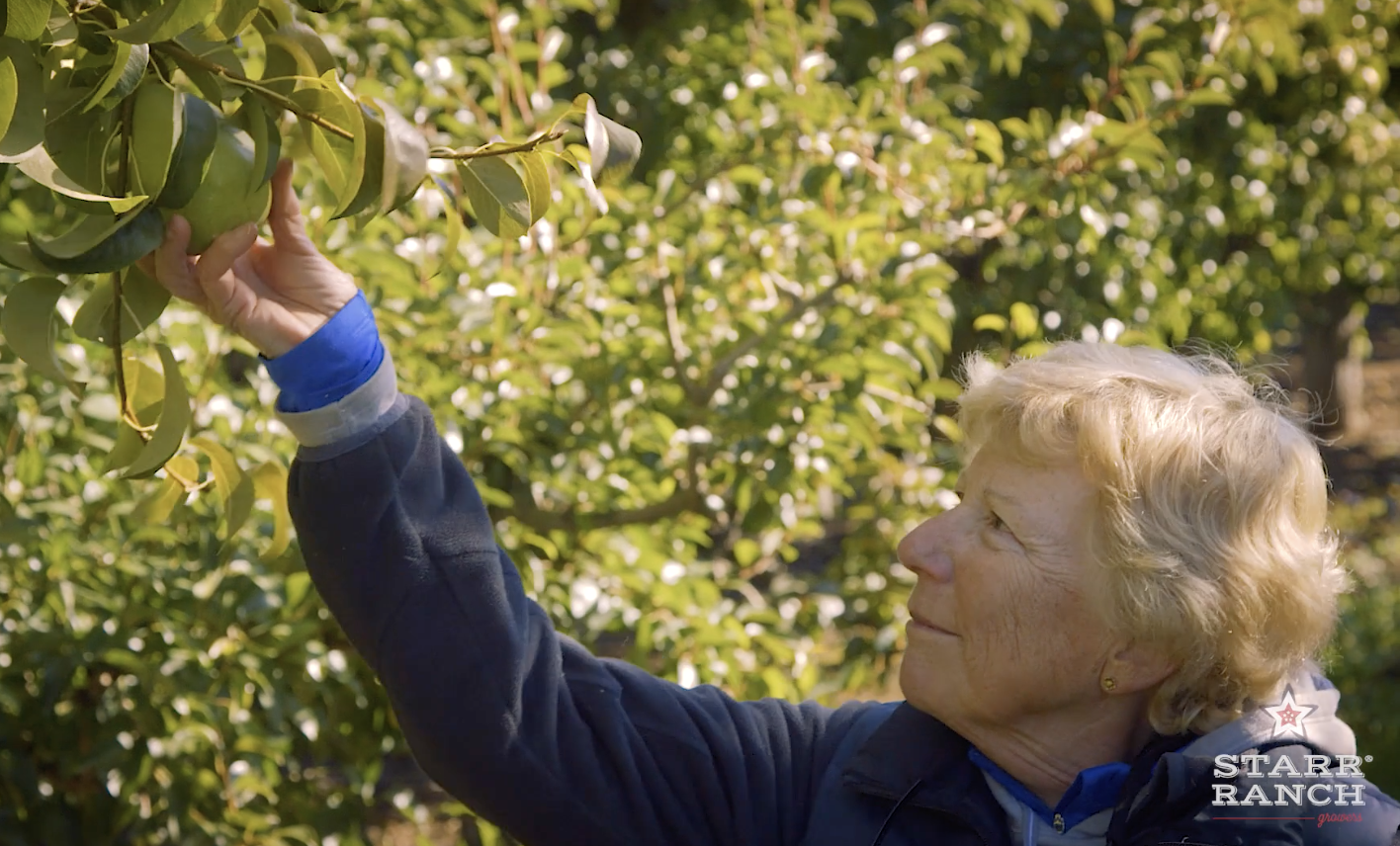 Farm Star Mary's Minutes: The Art of Growing Pears