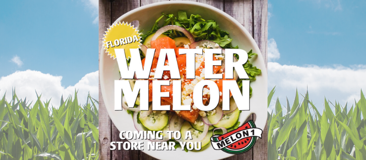 Melon 1 Watermelons - A Slice of Florida Sunshine!