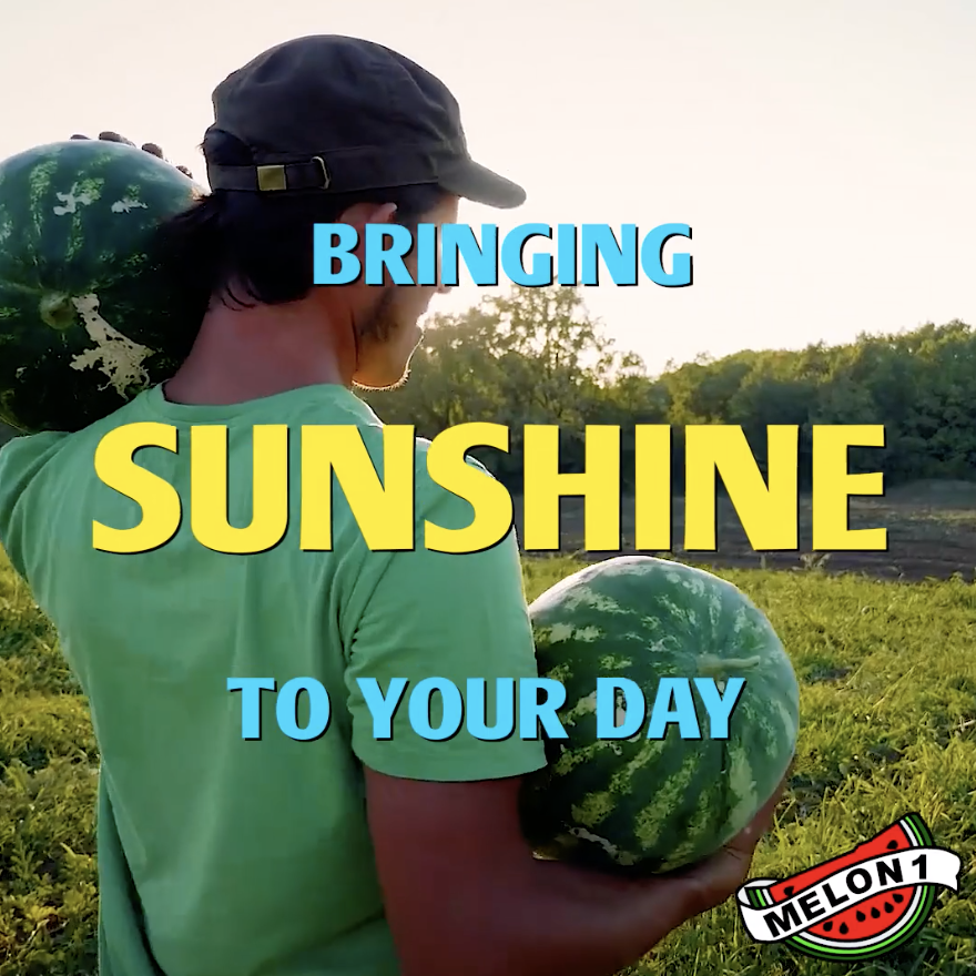 Melon 1: Bringing Sunshine To Your Day