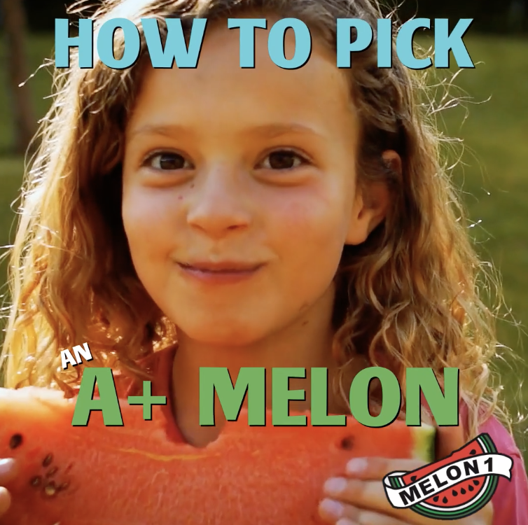 Melon 1: How To Pick Watermelons