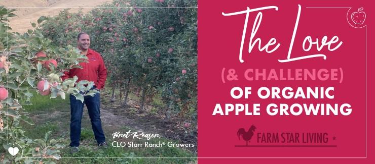 The Love of Organic Apple Growing