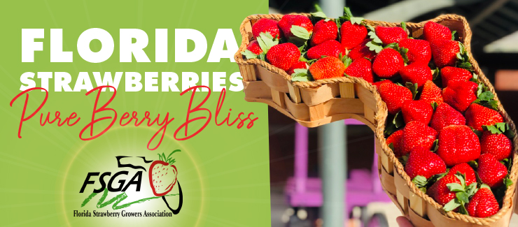 It's Finally Here - Florida Strawberry Season!