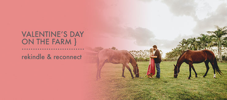 Valentine's Day On The Farm