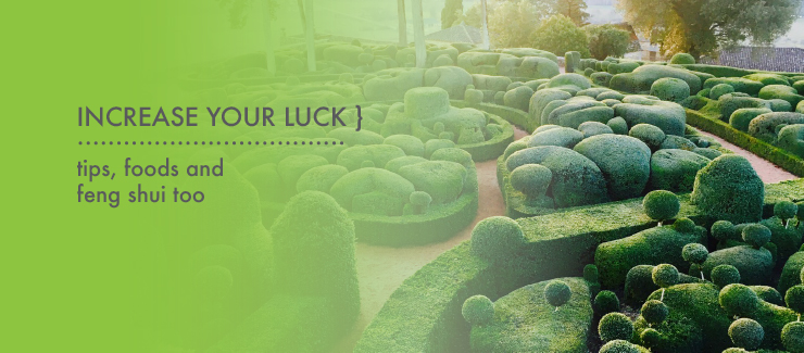 Our March Theme: Enhance Your Luck, Nutrition & Spas!