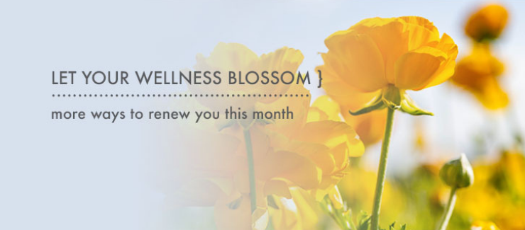 LET YOUR LIFE BLOSSOM: This Month's Theme