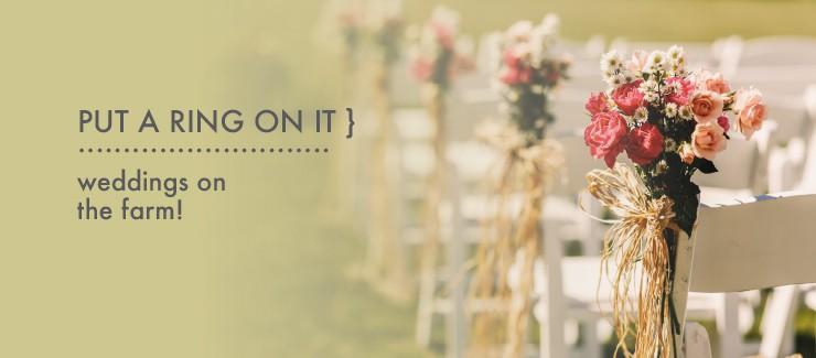 Weddings On The Farm!