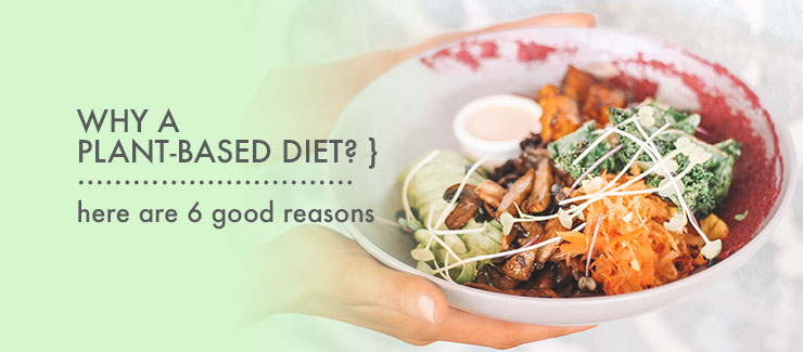 Reasons to Consider A Plant-Based Diet