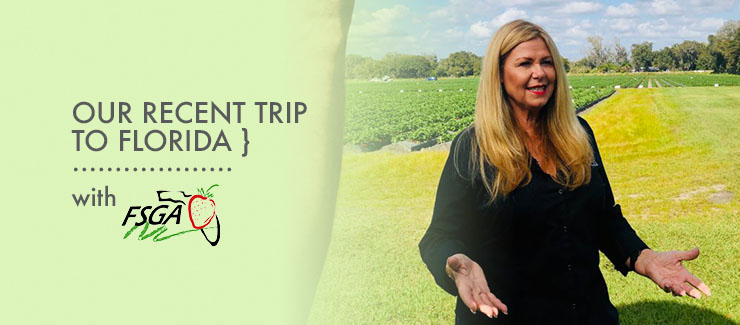 Our Recent Trip to Florida with the Florida Strawberry Growers Association